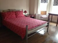 double room, large double room to let, room to let, flat share, single or double occupancy