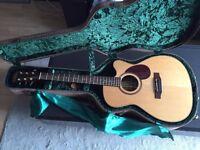 Freshman Electro-Acoustic Guitar - £650 (RRP £999!)