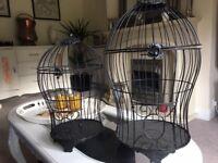 Black Bird Cages x 2