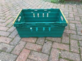 supermarket style tray with bail arm