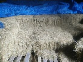 Traditional size hay bales. Last year's crop, barn stored. Good Quality. £2.50