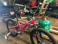 Found girls bicycle
