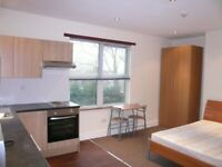 Huge modern double room with Kitchen and use of garden, close to Finchley central tube