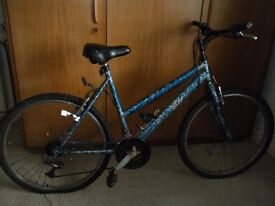 Ladies mountain bike in need of tlc. Think it's Apollo but labels have been painted over. Pick up
