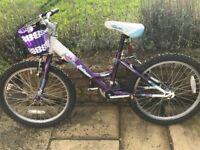 Girls Raleigh bike