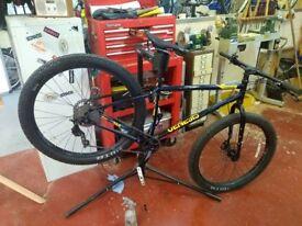 Genius longitudinal +bike