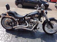 Black Harley Breakout