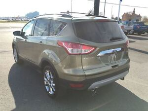 2013 Ford Escape SEL - HEATED LEATHER, REMOTE START Kingston Kingston Area image 5