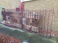Metal gates for a driveway