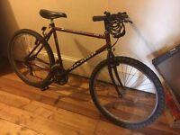 Raleigh 26'' bike, good condition