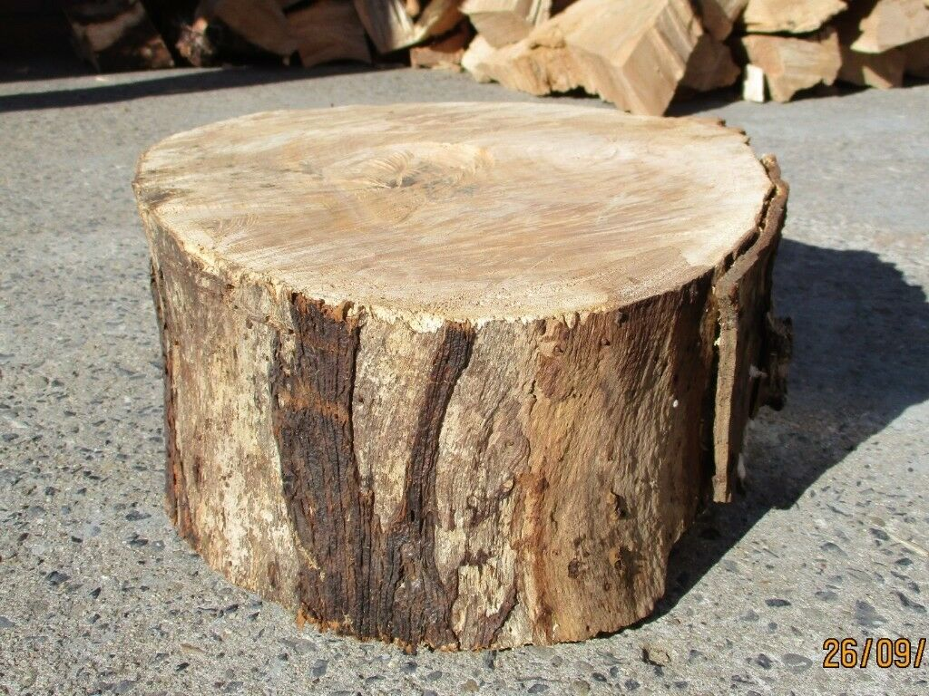 Large Woodturning Elm Wood Log In Seaham County Durham