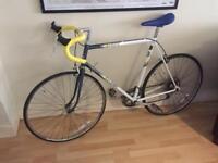 Raleigh Equip Vintage Bike