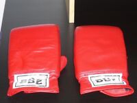 BBE Sparring / Training Boxing Gloves