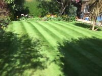 Do you require Garden Mainentance??? Worthing Area