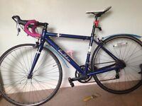 Pendleton initial road bike