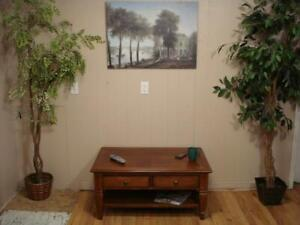 Lovely Coffee Table/Tv Stand