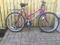 LADIES STYLE MOUNTAIN BIKE FOR SALE, BARGAIN PRICE.