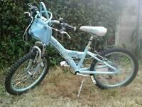 2 Girls Raleigh bikes