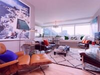 Stunning Modern 1 bed apartment in Pimlico, Sleeps 2 (Veeve)