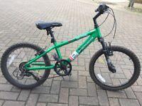 Diamondback boy mountain bike