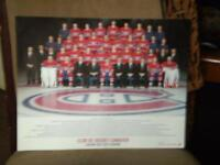 affiche du canadien edition 2013-14