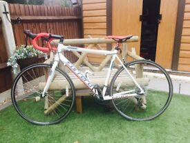 Careers Zelos road bike (54cm)