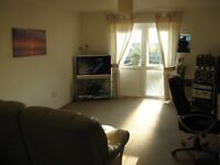Lovely Double Room in house with gardens in Newton Abbot