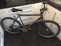 Raleigh Firefly Mountain Bike