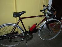 freespirit vintage racing bike