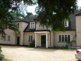 1 bedroom flat in Lakeside, Finchampstead, Wokingham, RG40 (1 bed) (#1117259)