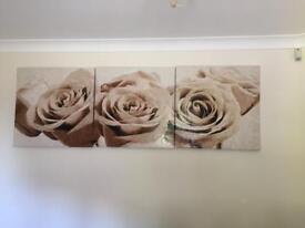 Rose picture frames