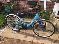 Ladies Apollo Dutch Bike