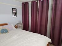Large double room in 2 bed flat