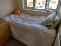 Single room in cozy home £390pcm