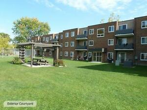 Be at home with Skyline! 1 Bedroom Apartment for Rent in Sarnia Sarnia Sarnia Area image 7