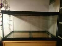 3ft Glass Vivarium