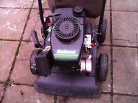 4 stroke lawn vac