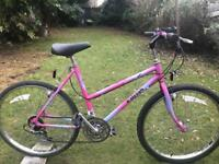 ladies raliegh mountain bike