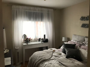 3 Bedroom Downtown Apartment