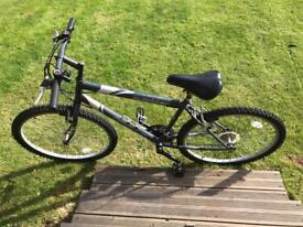 Adult bike (medium size). Sully.