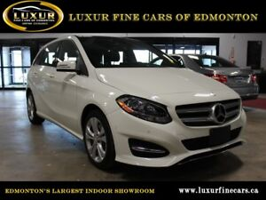 2015 Mercedes-Benz B-Class B 250 Sports Tourer