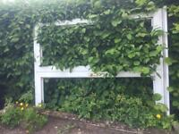 Double Glazed Patio Door Frame - must go by 9pm Sunday 24th June