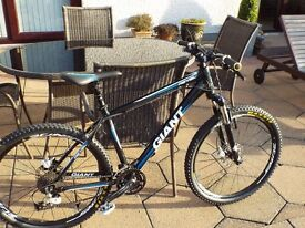 Giant Revel 52cm - Ready for Competition for the Serious Rider