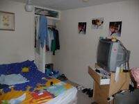 One large double room ,light,furnished single bedroom in share flat.