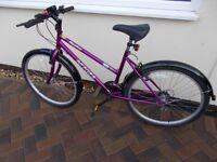 Integra Phantom Mountain Tracks bike