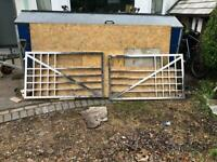 Stainless Steel Gates - Art Deco