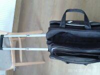 Travel Bag pull on wheels