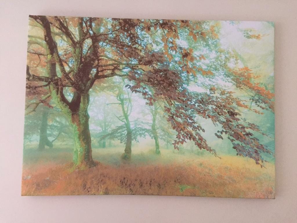 Large canvas - forest scene