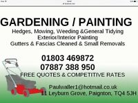 Gardening & Painting, hedge cutting, fascia and gutter cleaning, chauffeur