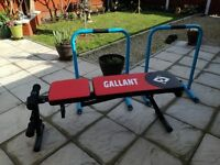 GALLANT ADJUSTABLE WEIGHT LIFTING BENCH & MENS HEALTH PARALLEL BARS